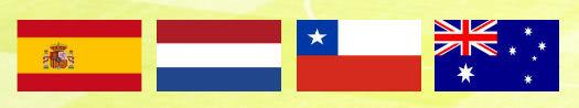 Gruppe B WM 2014 mit Spanien, Niederlande, Chile und Australien
