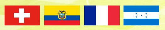 WM 2014 Gruppe E mit Schweiz, Ecuador, Frankreich und Honduras